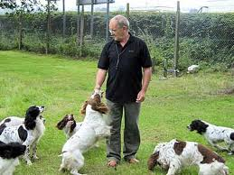 awyr iach gundogs - training